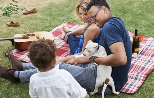 Family enjoying picnic with small dog